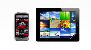 We provide iPhone, iPad and Android native app development